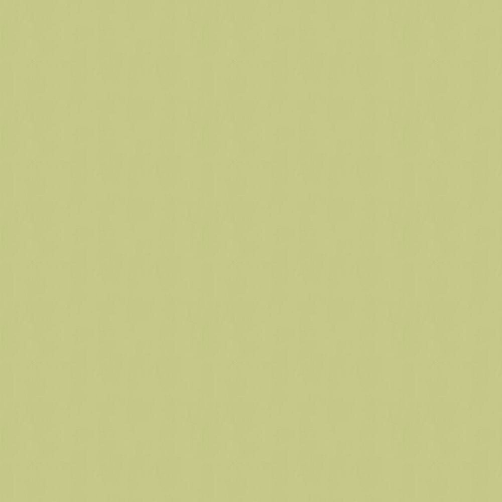 Farrow & Ball Plains Light Moss Green Wallpaper - Product code: BR 3408