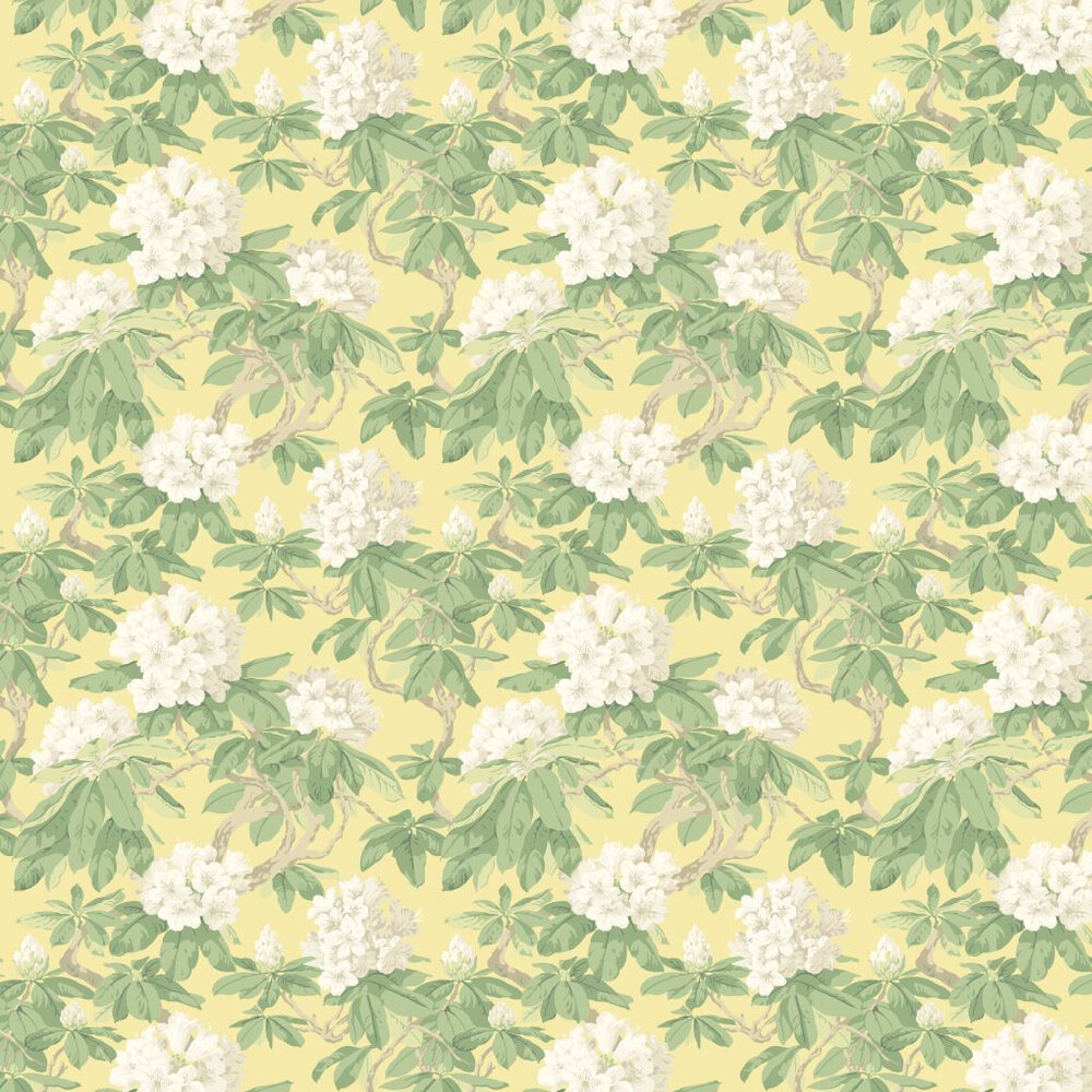 Cole & Son Bourlie Lemon Wallpaper - Product code: 99/4021