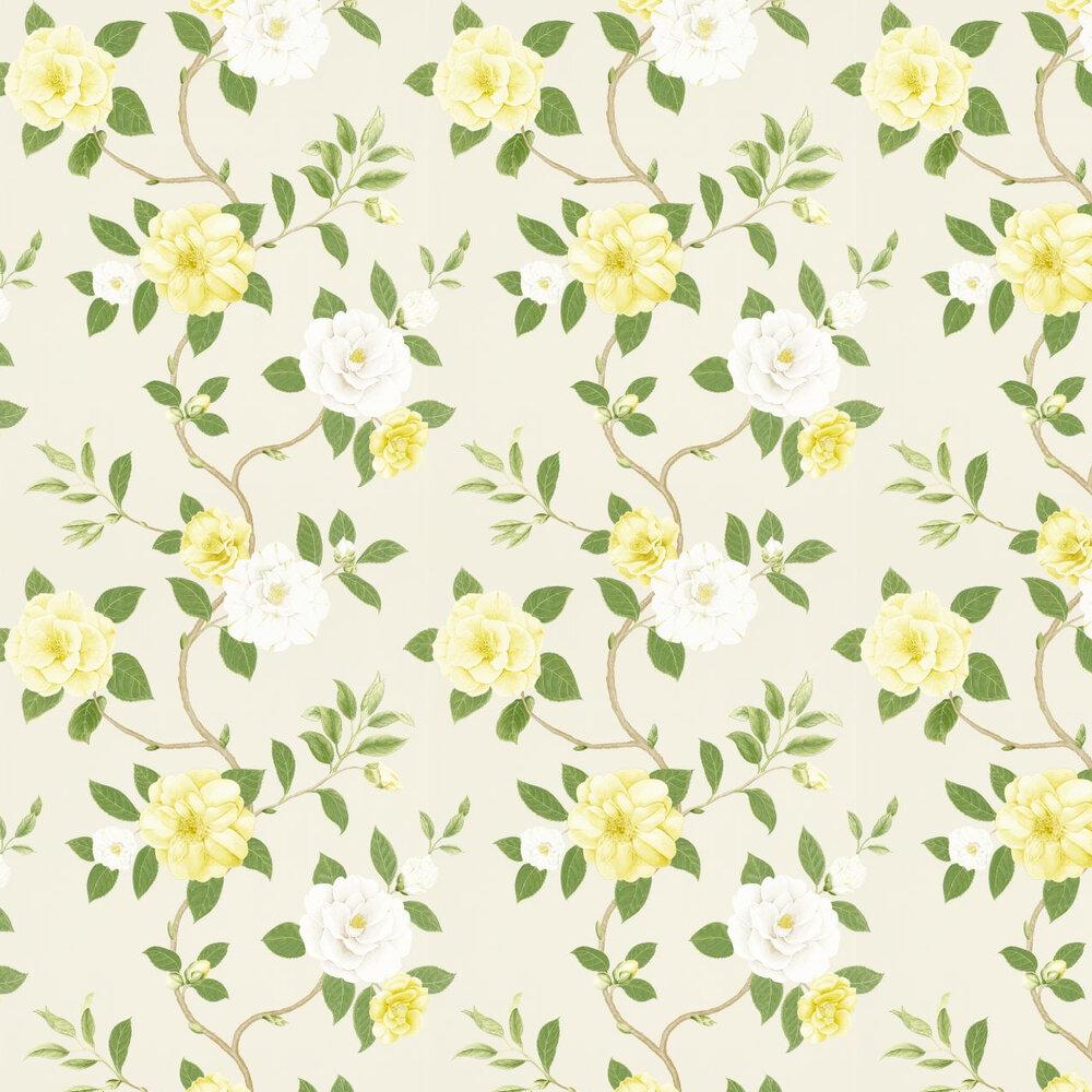 Sanderson Christabel Yellow / Green Wallpaper - Product code: 213377