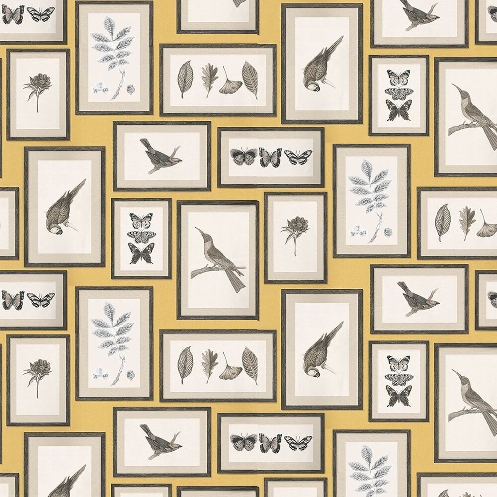 Sanderson Picture Gallery Yellow / Multi Wallpaper - Product code: 213396