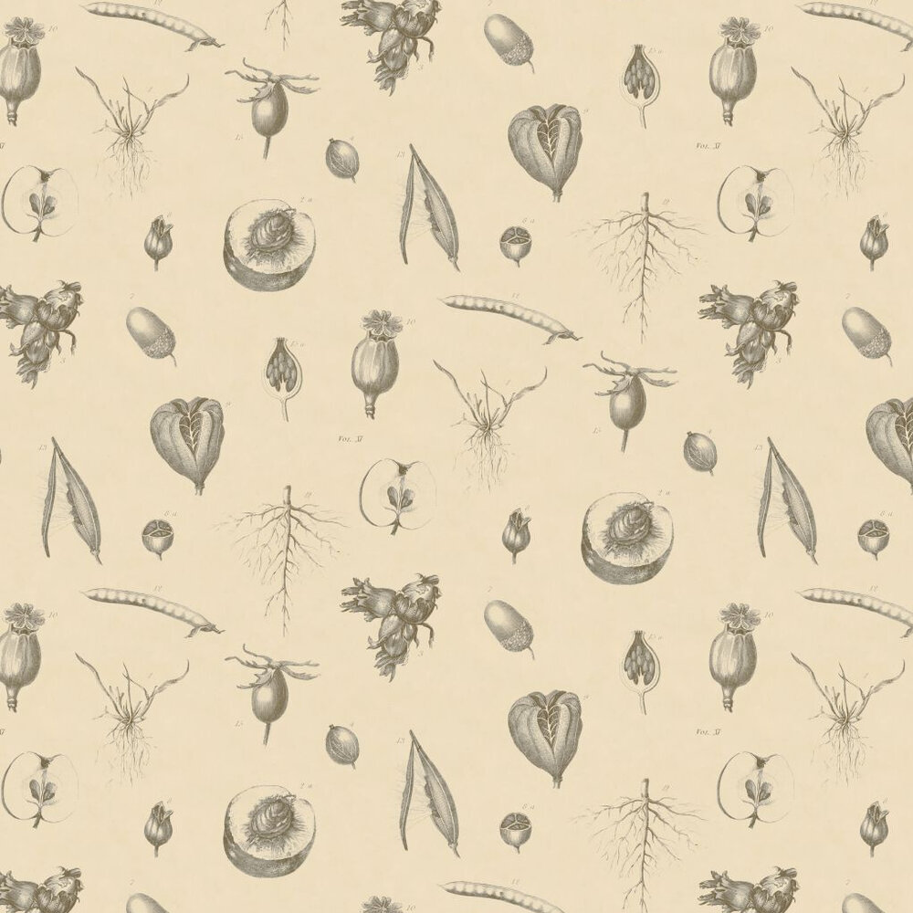 Linwood Roots & Fruits Grey / Cream Wallpaper - Product code: LW50/1