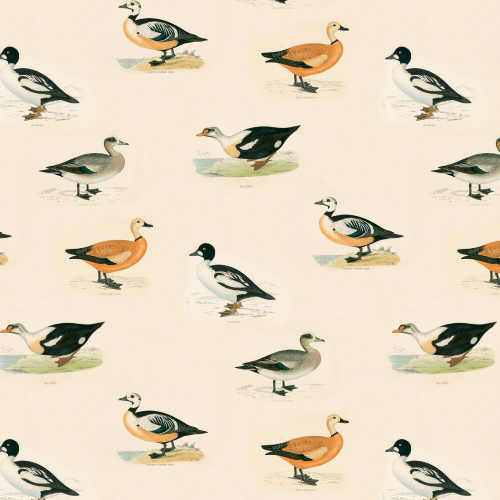 Golden Eye Wallpaper - Multi / Cream - by Linwood