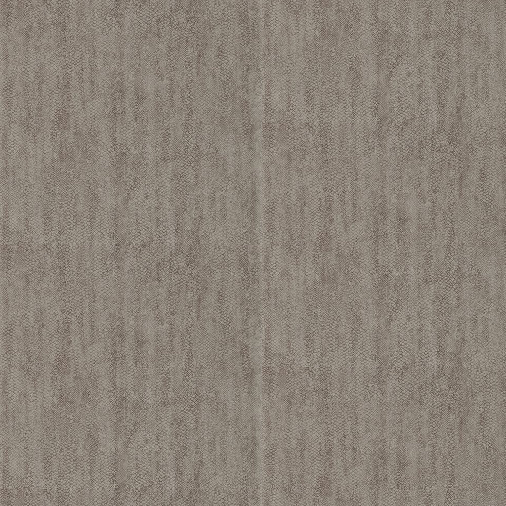 Anthology Anaconda Sulphur Black / Grey Wallpaper - Product code: 110705