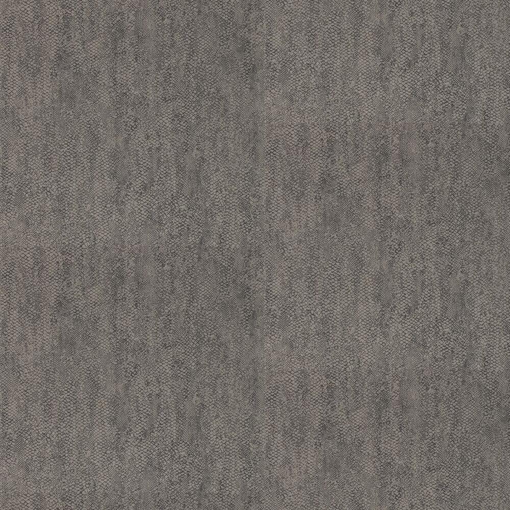 Anthology Anaconda Graphite Wallpaper - Product code: 110711