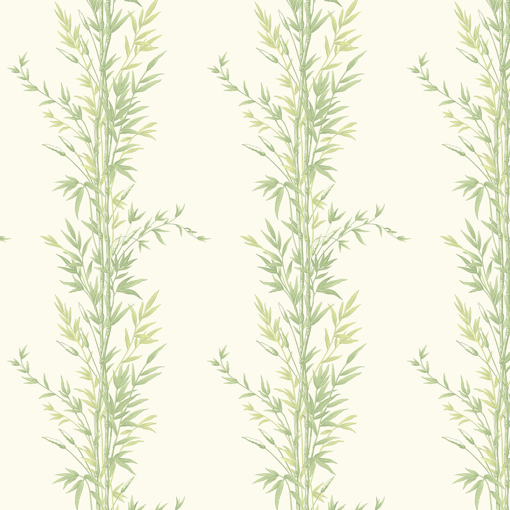 Cole & Son Bamboo  Green and Off White Wallpaper - Product code: 100/5023
