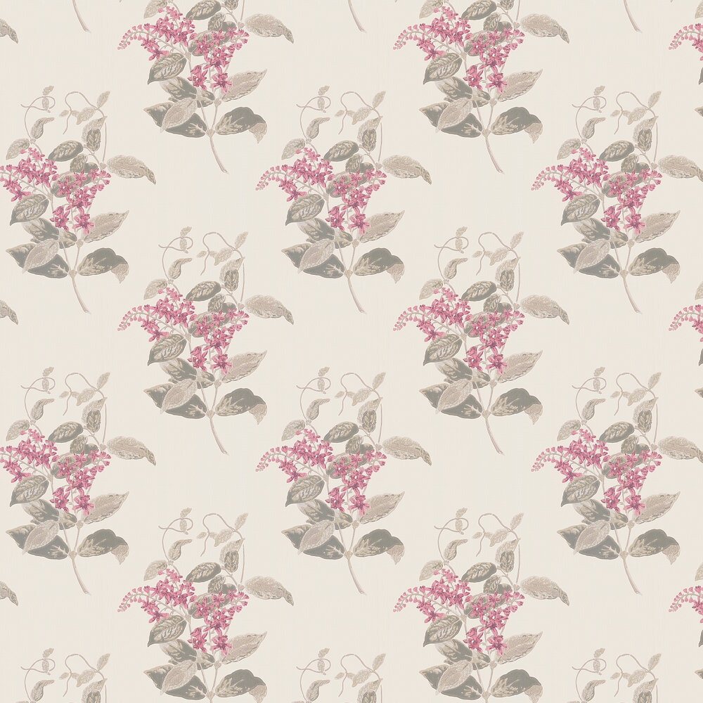 Madras Violet  Wallpaper - Pink - by Cole & Son
