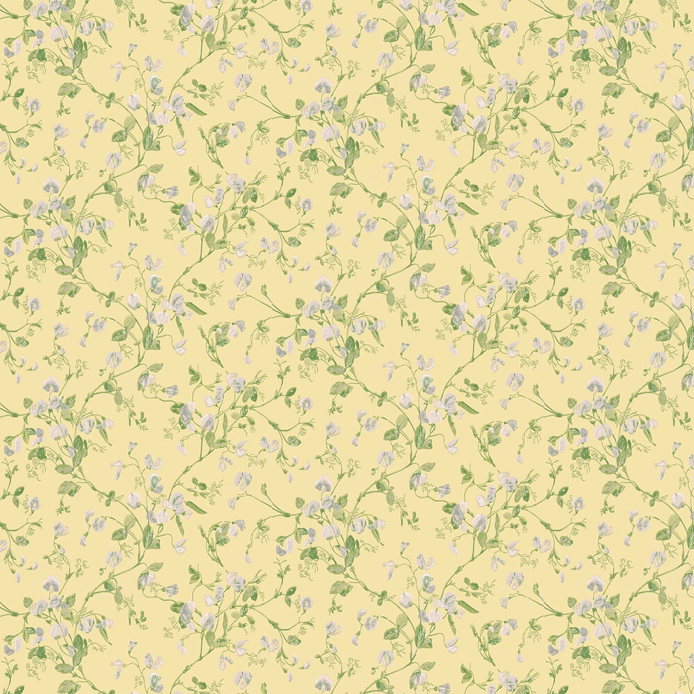 Sweet Pea  Wallpaper - Yellow - by Cole & Son