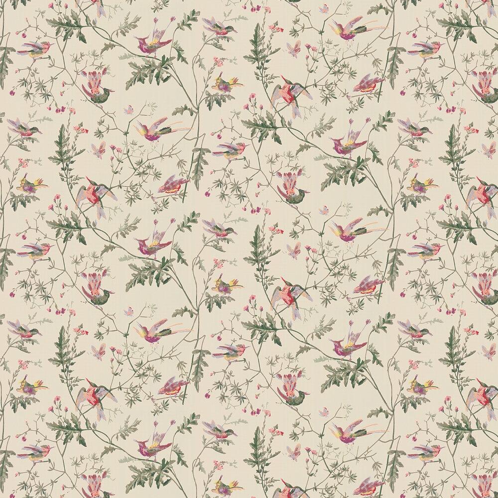 Hummingbirds  Wallpaper - Original Multi-Colour - by Cole & Son