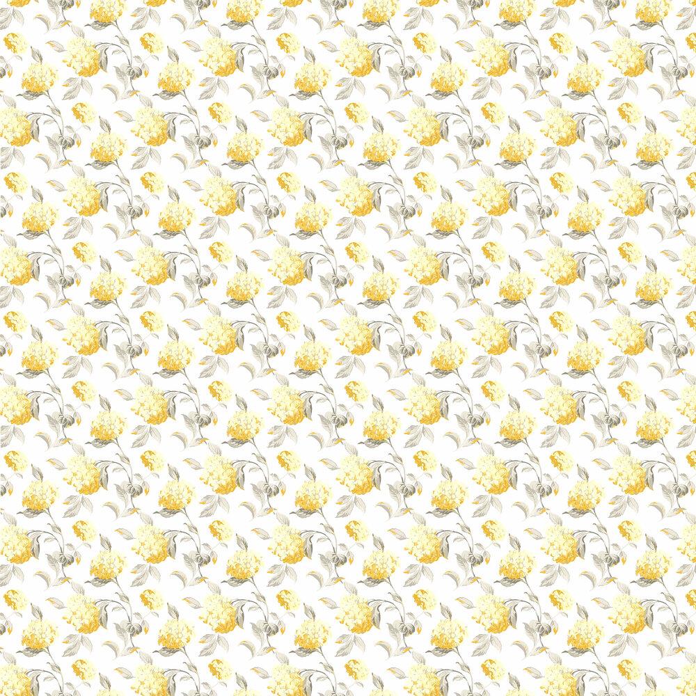 Laura Ashley Hydrangea  Camomile Wallpaper - Product code: 3534812
