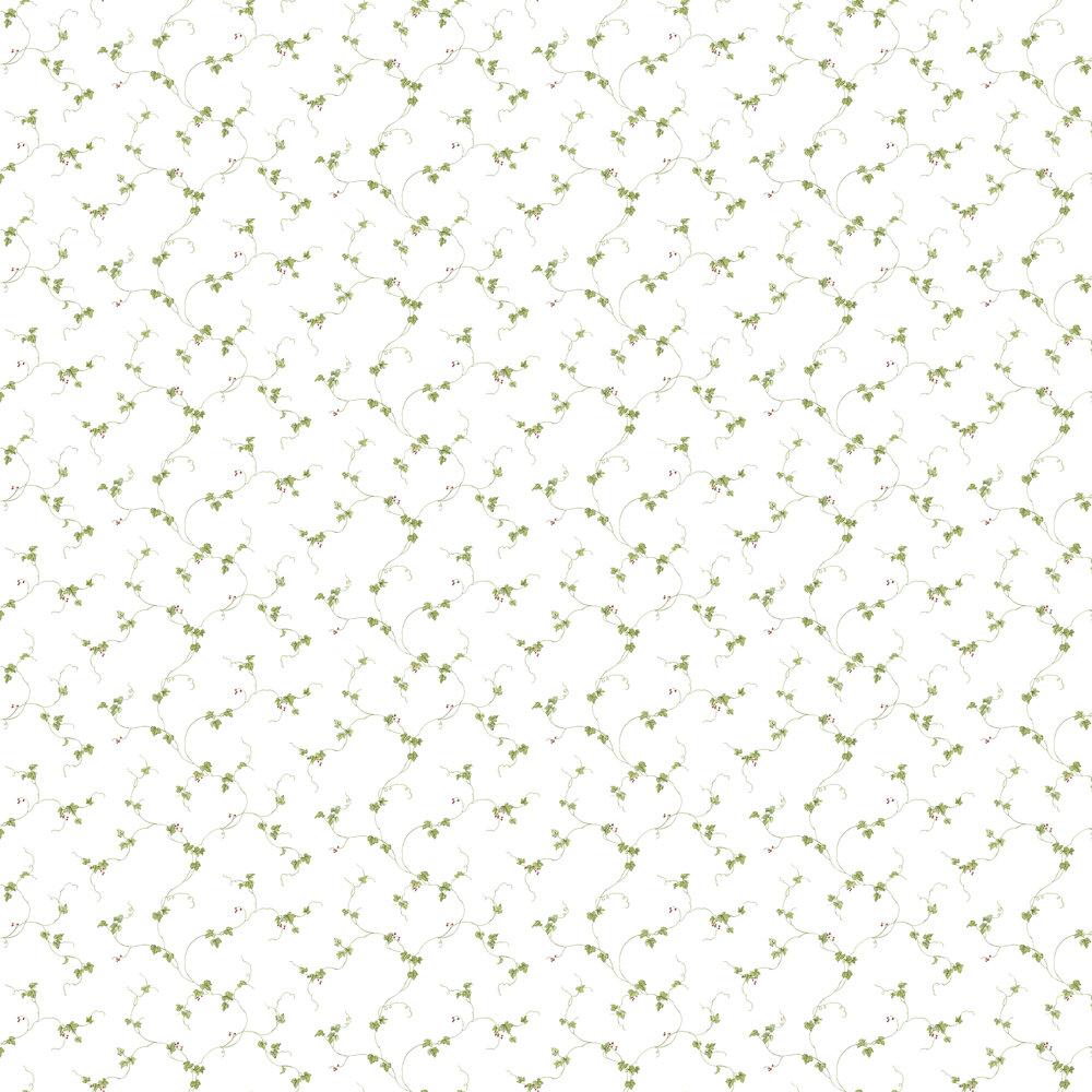 Galerie Trailing Vine  Green Wallpaper - Product code: FK34438