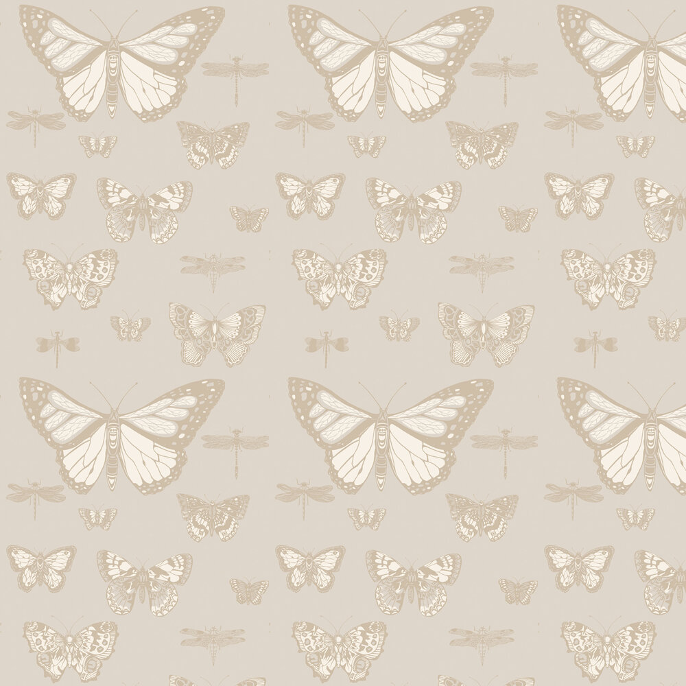 Butterflies and Dragonflies Wallpaper - Grey - by Cole & Son