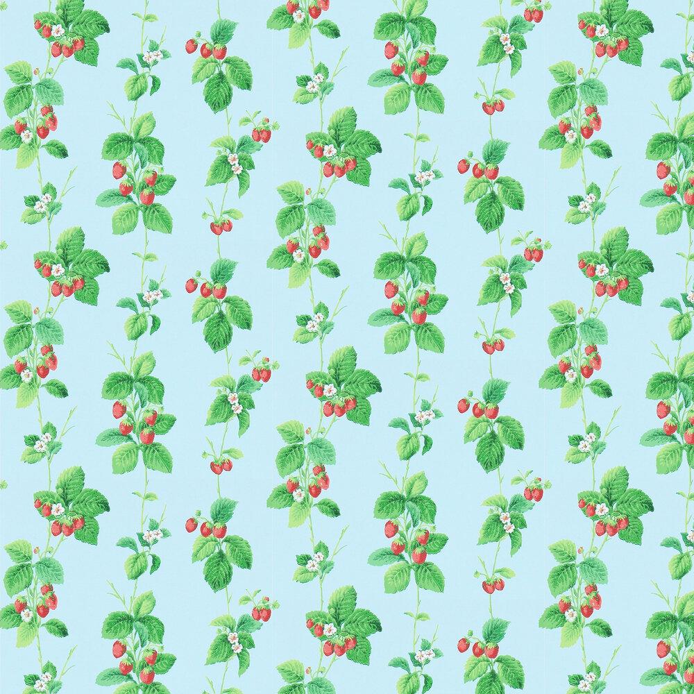 Sanderson Summer Strawberries Strawberry / Sky Wallpaper - Product code: 214591