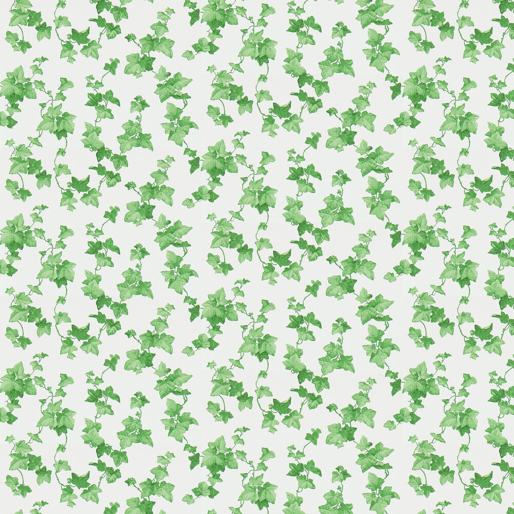 Hedera Wallpaper - Green - by Sanderson