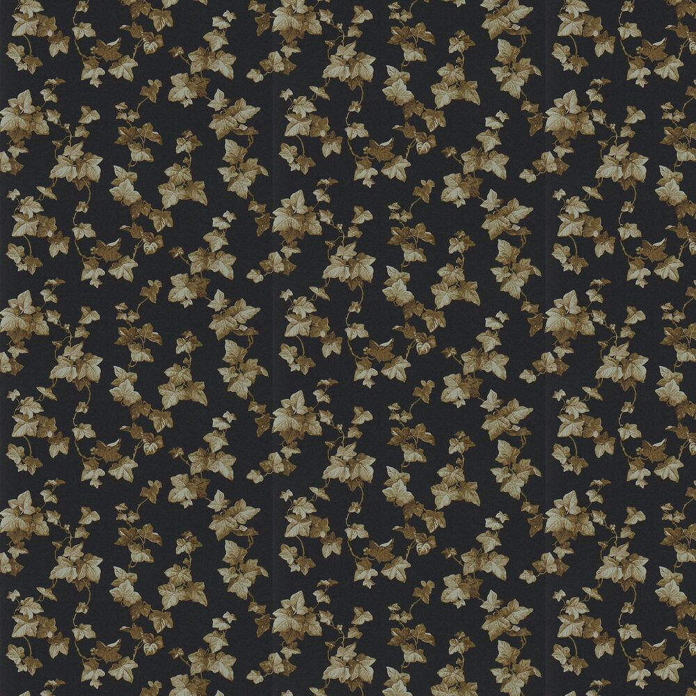Sanderson Hedera Ebony / copper Wallpaper - Product code: 214596