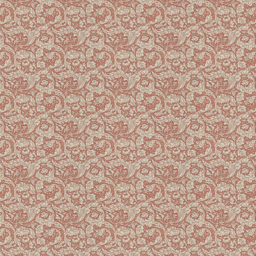 Bachelors Button Wallpaper - Russet - by Morris