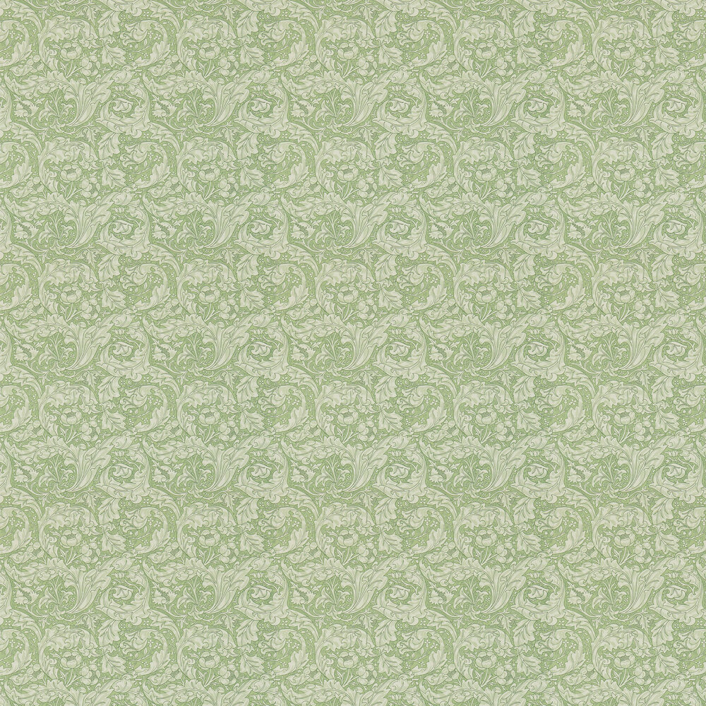 Bachelors Button Wallpaper - Thyme - by Morris