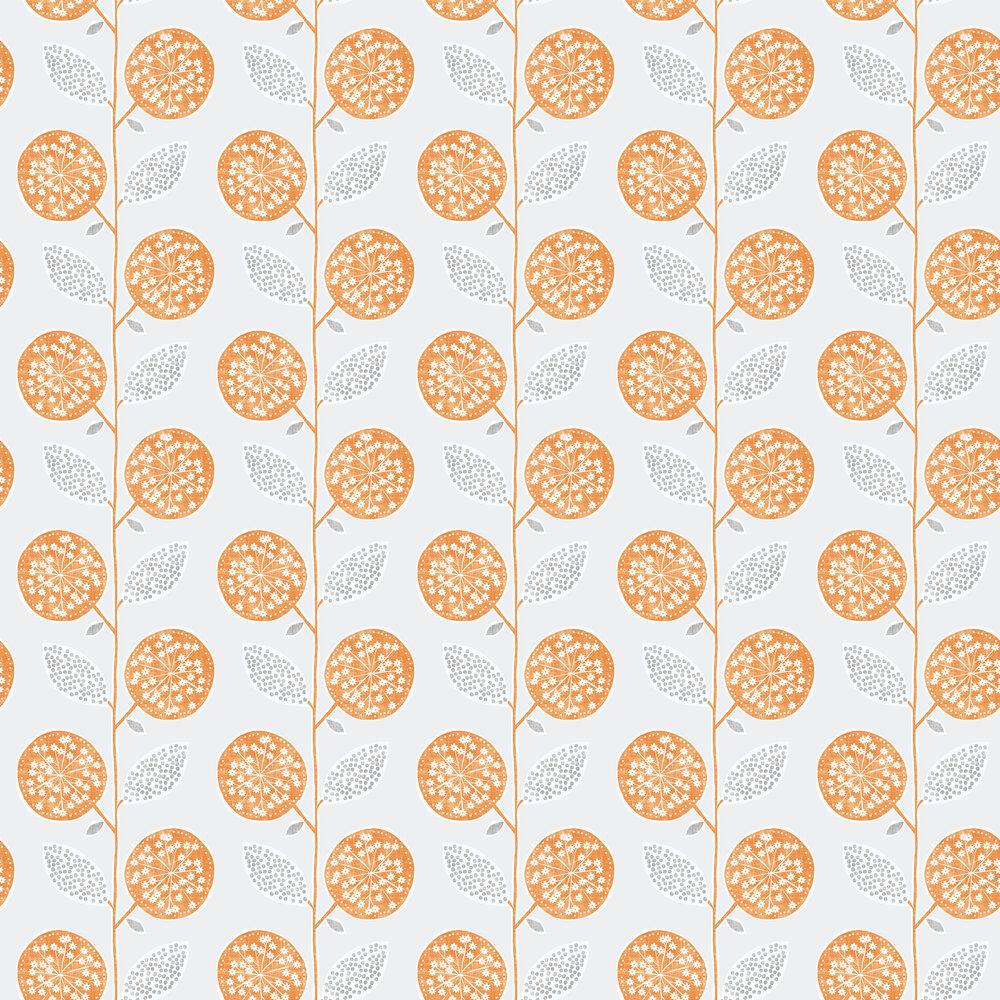 Galerie Dandelion Trail Orange Wallpaper - Product code: G56352