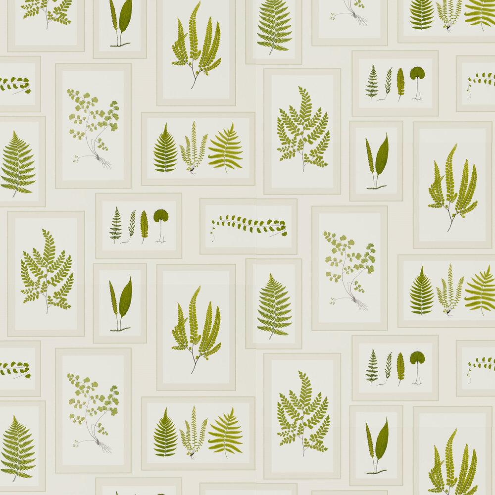 Fern Gallery Wallpaper - Ivory - by Sanderson