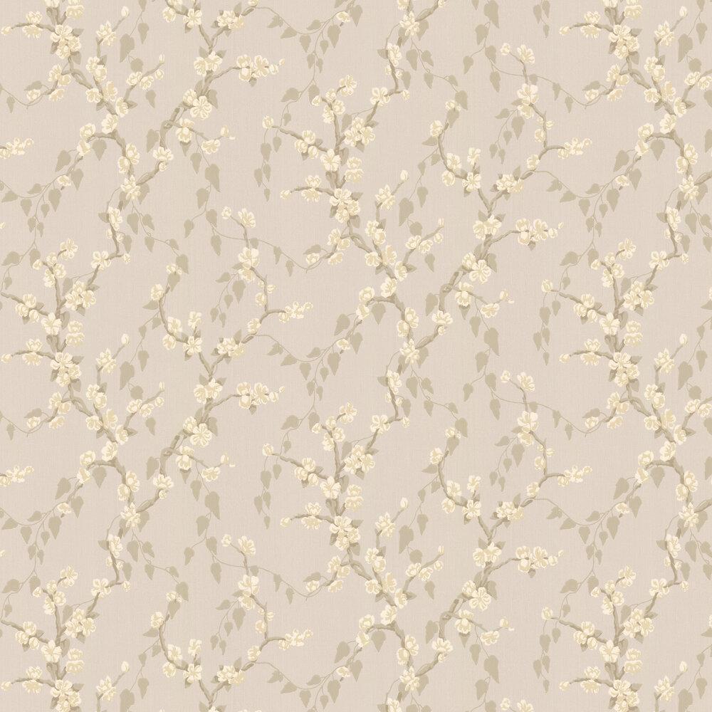 Sakura Wallpaper - Fawn - by Little Greene
