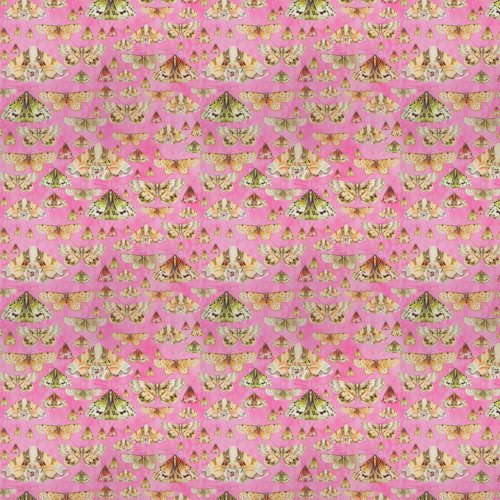 Issoria Wallpaper - Rose - by Designers Guild