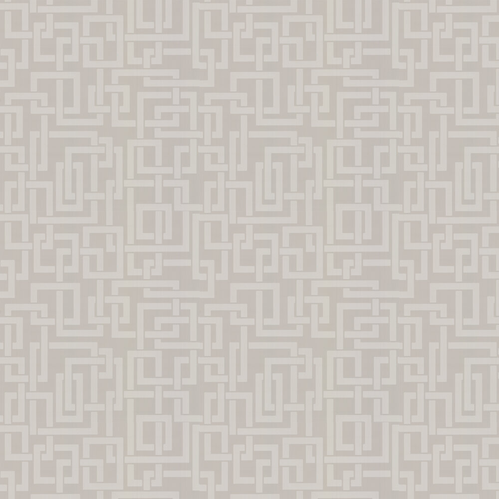 Enigma Wallpaper - Taupe Beige - by Farrow & Ball
