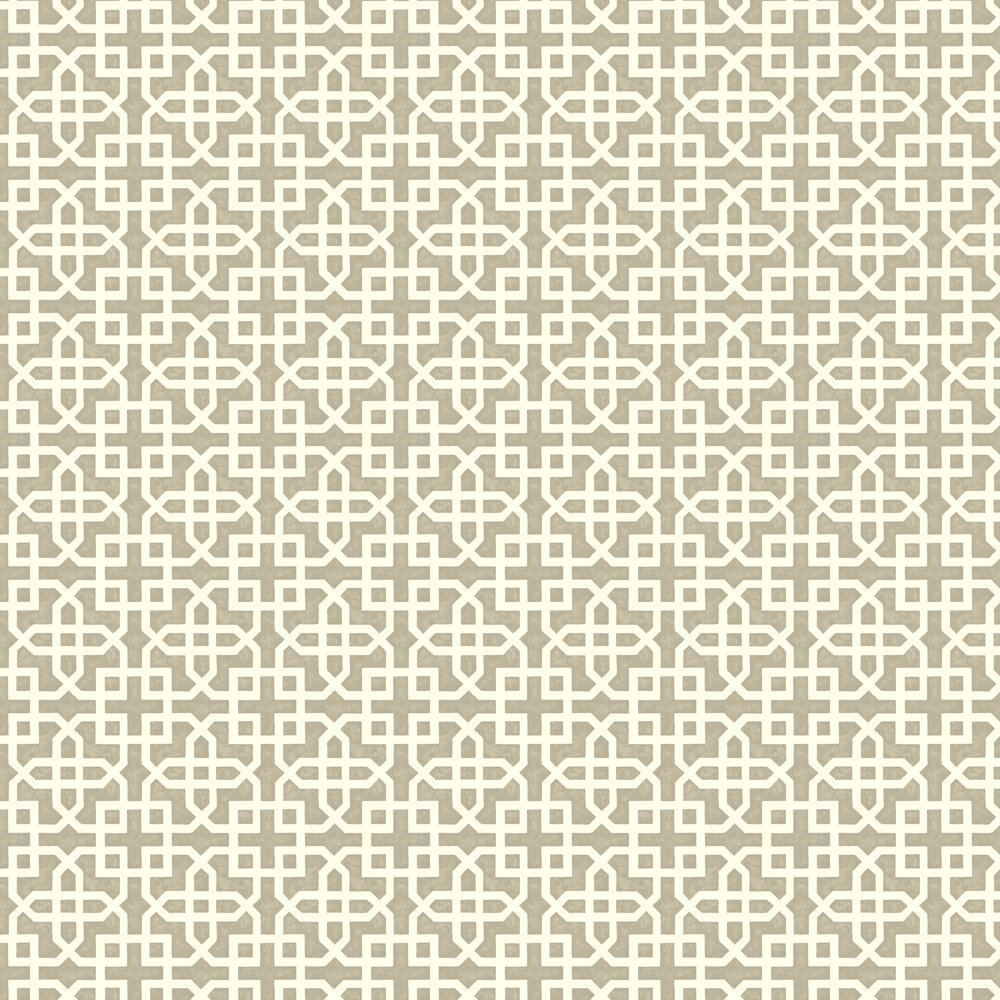 Monserrat Wallpaper - Taupe - by Clarke & Clarke