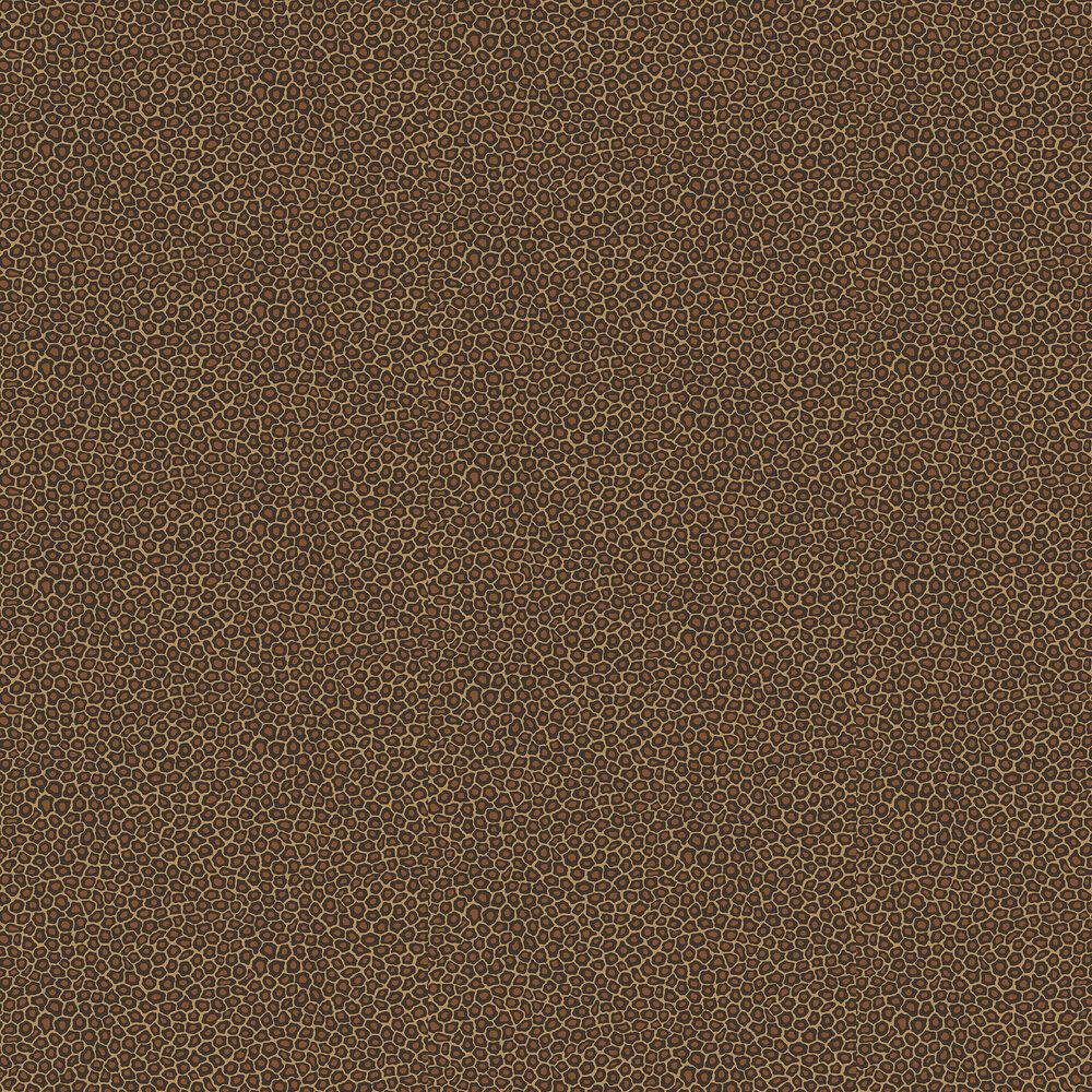 Senzo Spot Wallpaper - True Leopard - by Cole & Son
