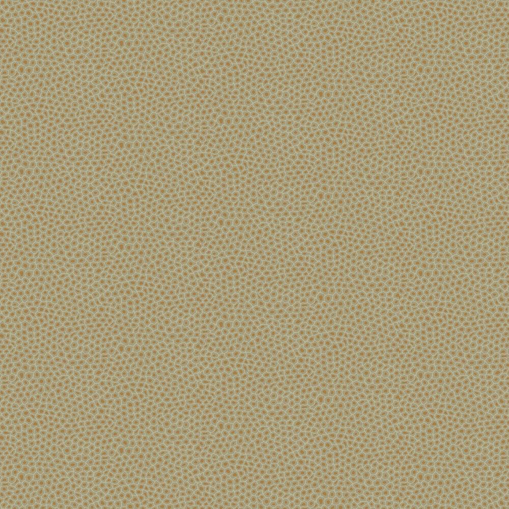Cole & Son Senzo Spot Olive Wallpaper - Product code: 109/6029