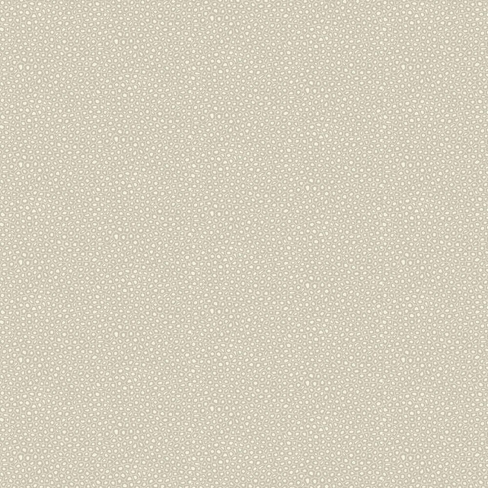 Cole & Son Senzo Spot Stone / White Wallpaper - Product code: 109/6030