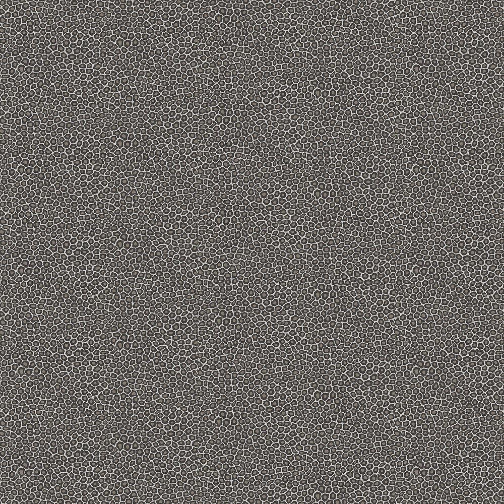 Senzo Spot Wallpaper - Black / White - by Cole & Son