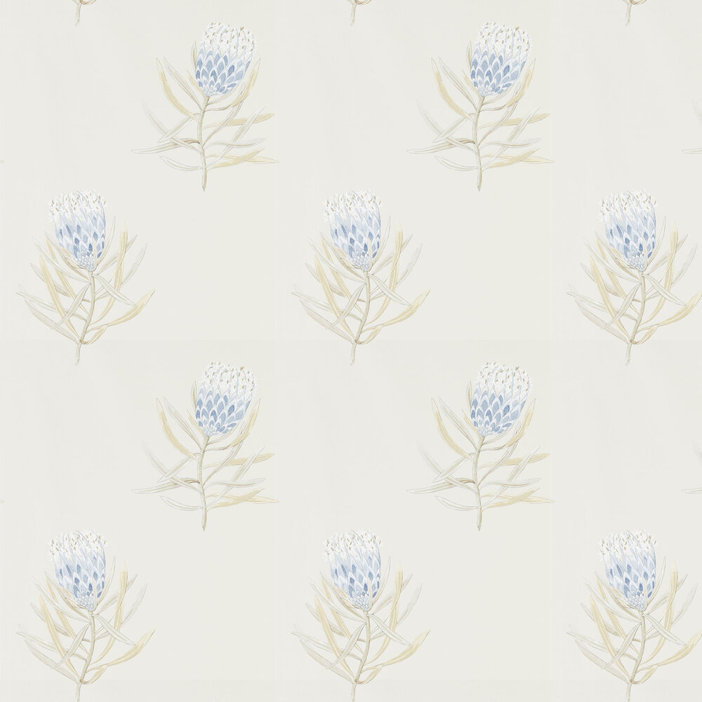 Protea Flower Wallpaper - China Blue / Canvas - by Sanderson
