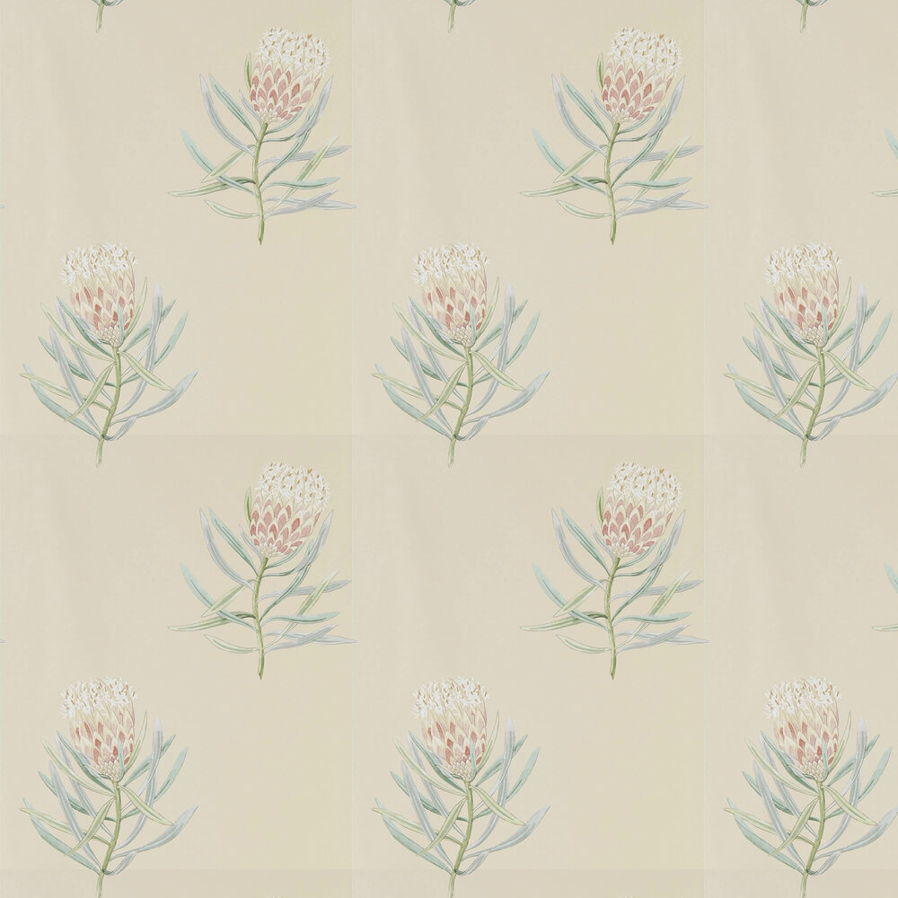 Protea Flower Wallpaper - Russet / Green - by Sanderson