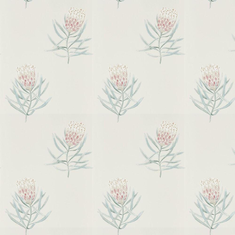 Protea Flower Wallpaper - Porcelain / Blush - by Sanderson