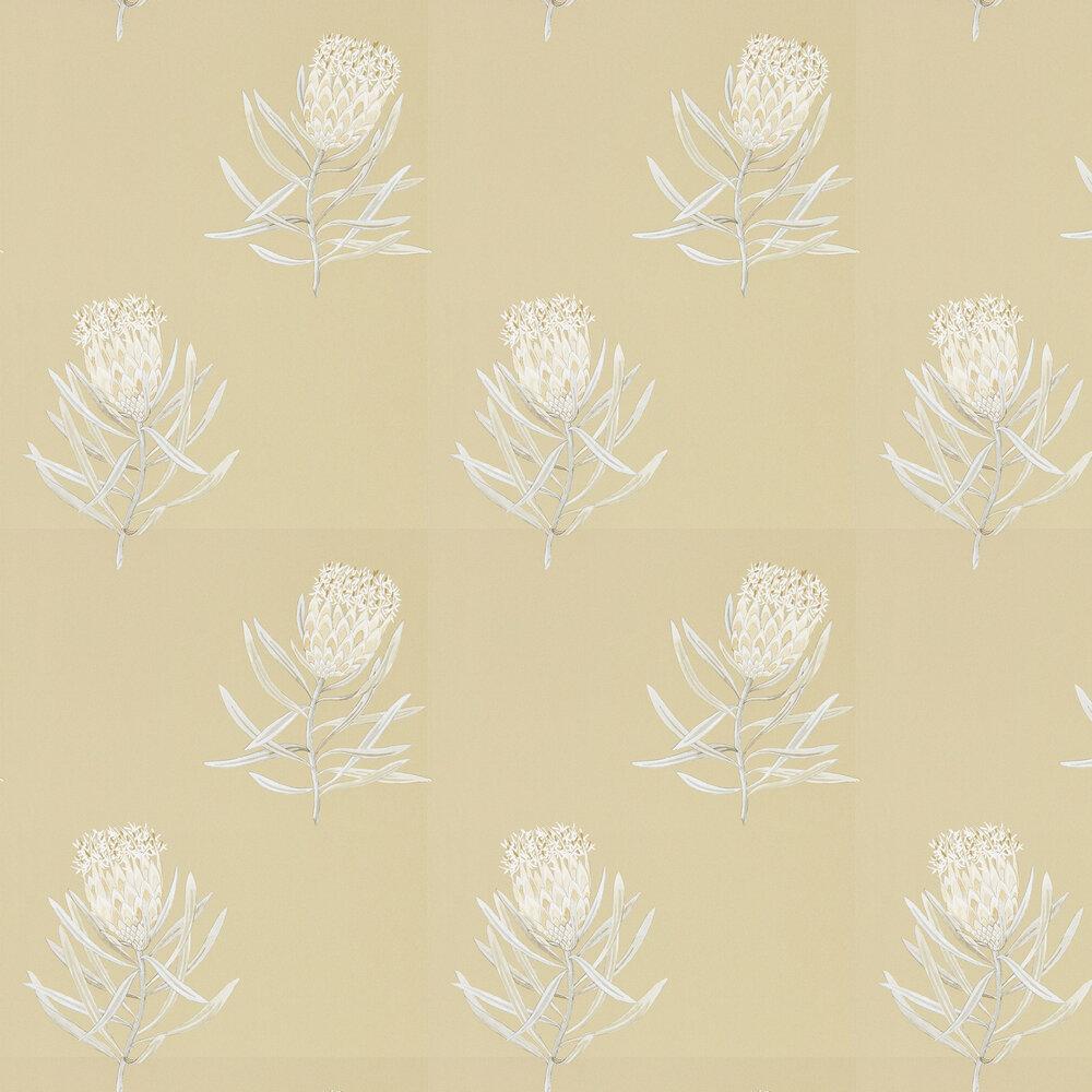 Protea Flower Wallpaper - Sepia / Champagne - by Sanderson