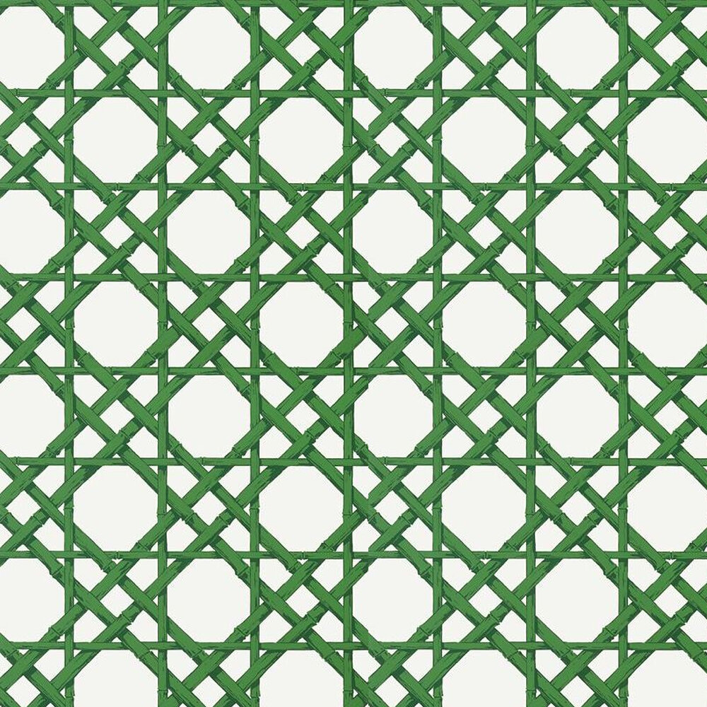 Thibaut Cyrus Cane Emerald Green Wallpaper - Product code: T13140