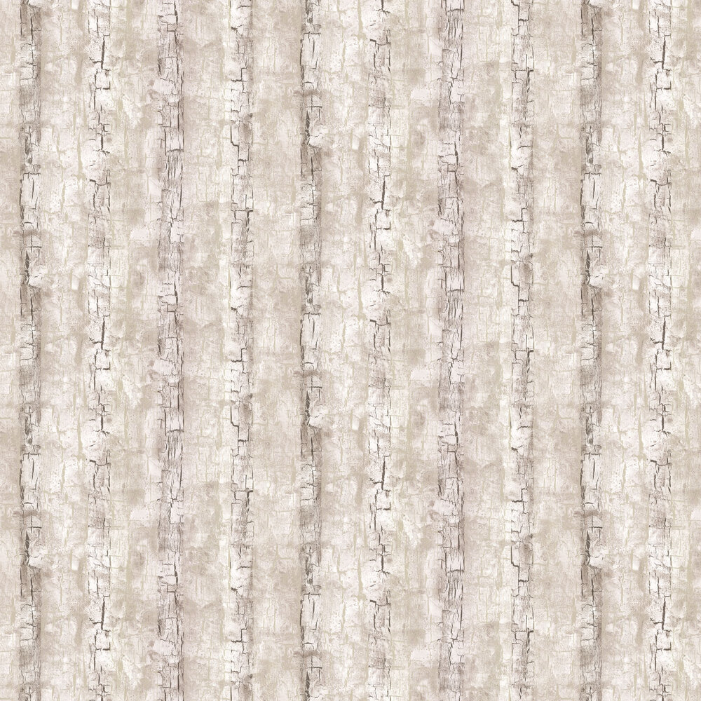 Clarke & Clarke Tree Bark Birch Wallpaper - Product code: W0062/02