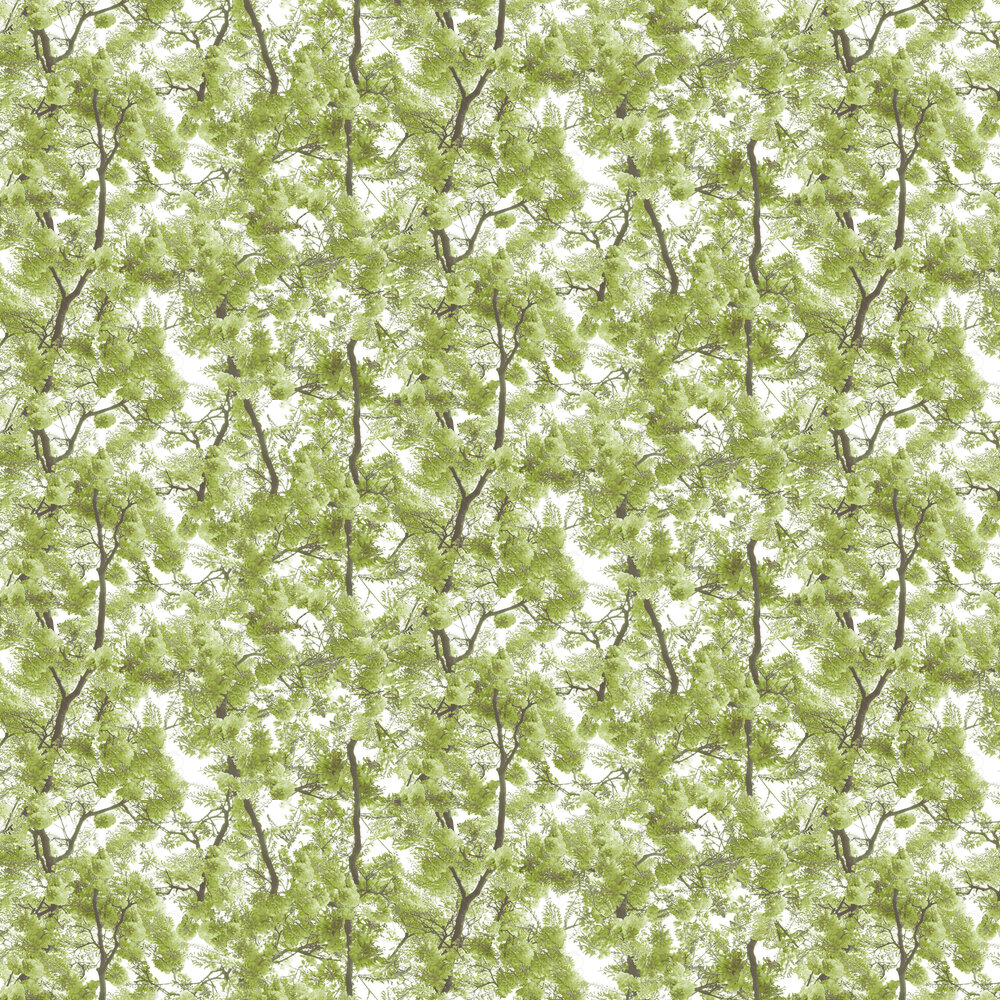 Albany Blossom Arbor Green  Wallpaper - Product code: L33104