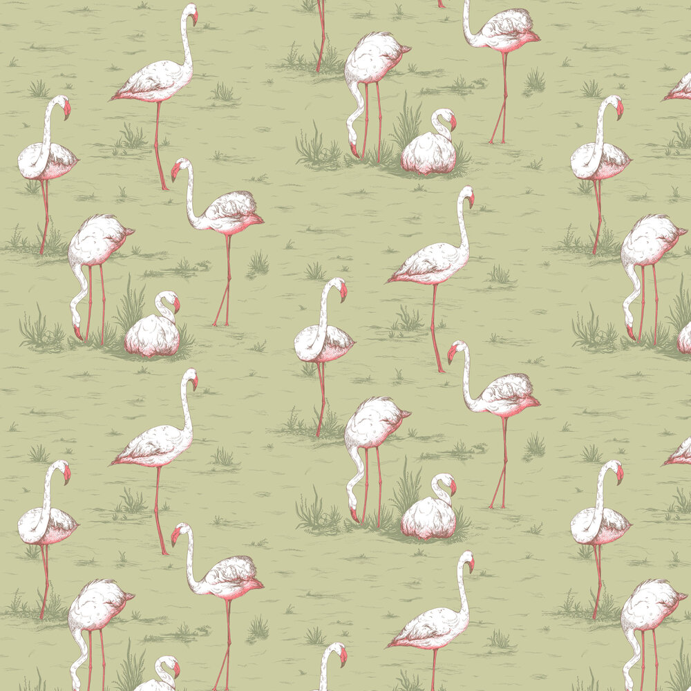 Flamingos Wallpaper - Olive - by Cole & Son