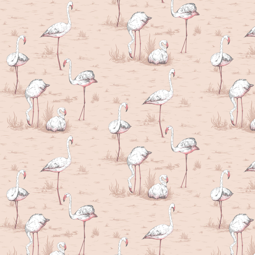 Cole & Son Flamingos Ballet Slipper Wallpaper - Product code: 112/11039