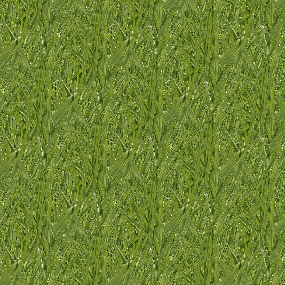 Grassy Meadow Wallpaper - by Wemyss