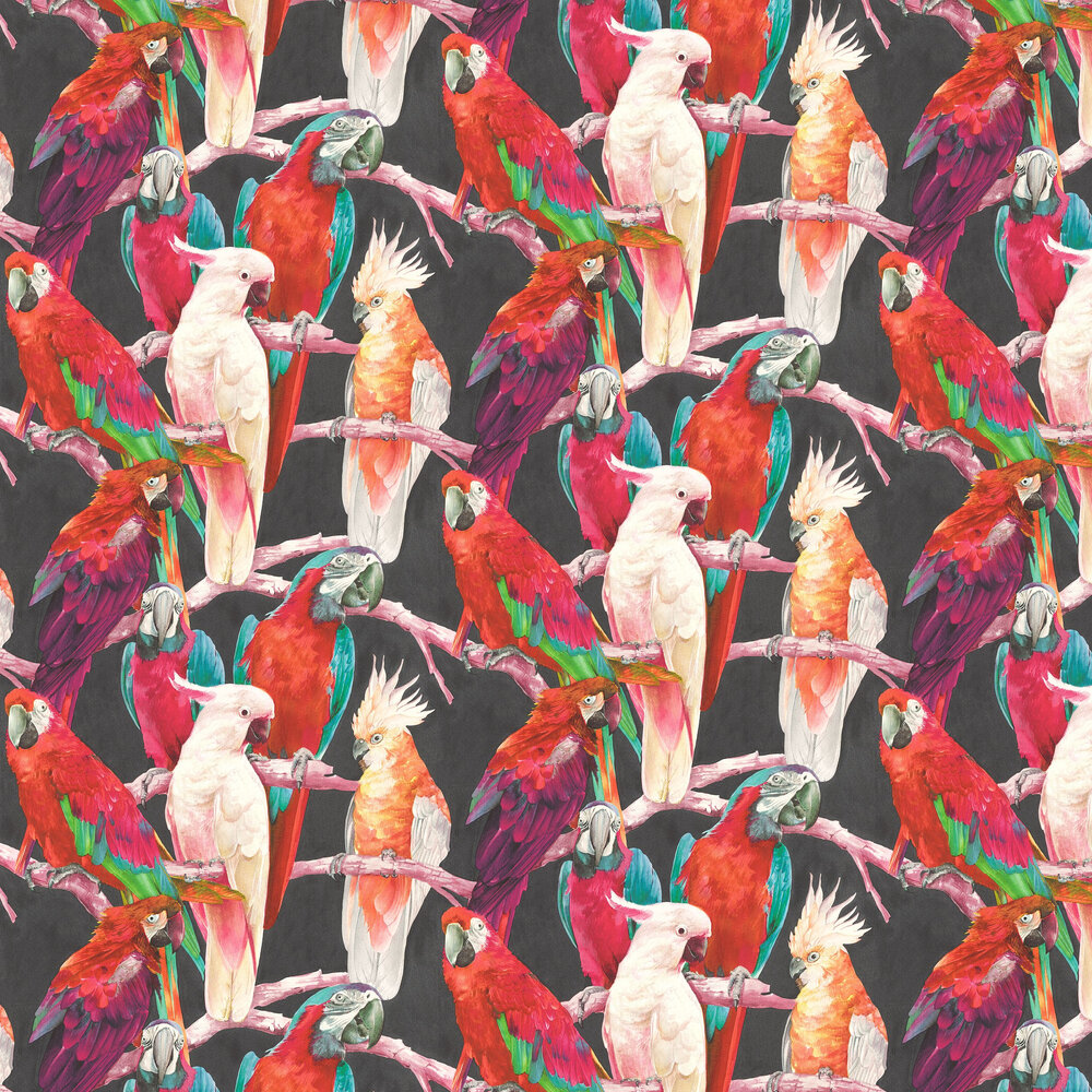Parrots Wallpaper - Multi / Black - by Albany