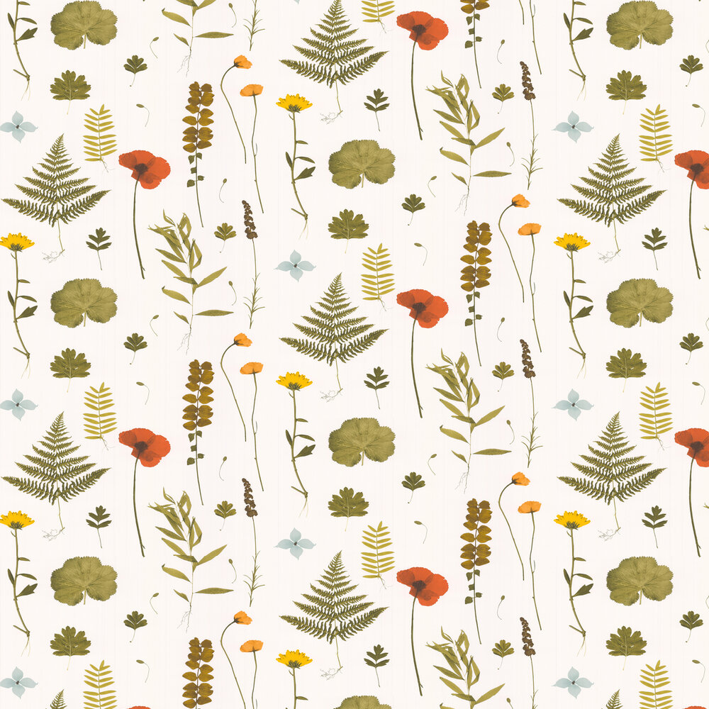Herbarium Wallpaper - Multi / Ivory - by Clarke & Clarke