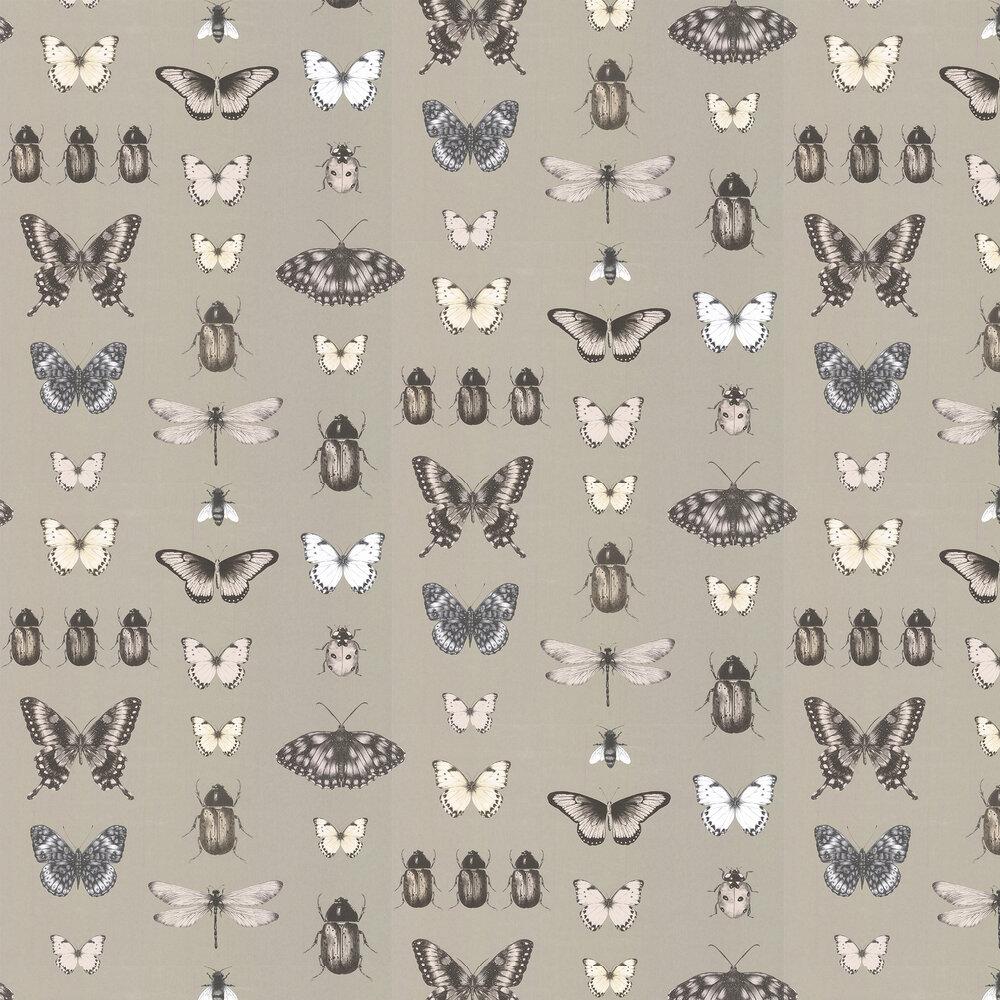 Clarke & Clarke Papilio Charcoal / Gold Wallpaper - Product code: W0094/01