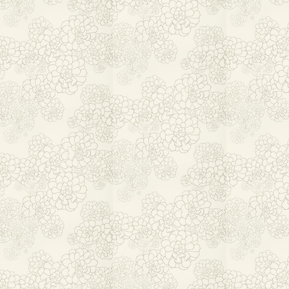 Aeonium Wallpaper - Wattle - by Paint & Paper Library