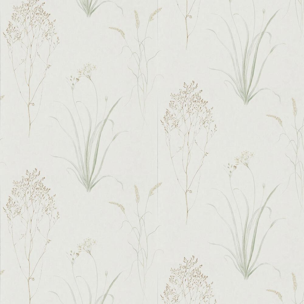 Sanderson Farne Grasses Willow / Pebble Wallpaper - Product code: 216488