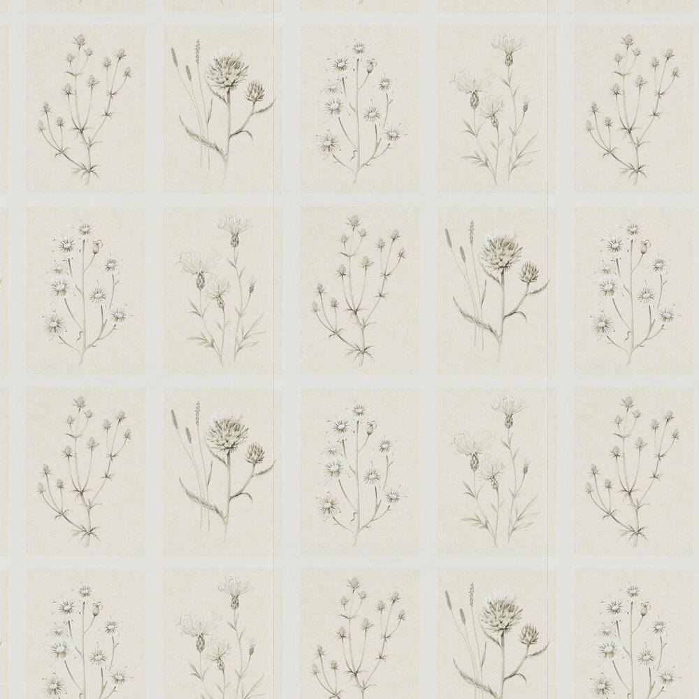 Sanderson Little Thistles Ecru Wallpaper - Product code: 216511