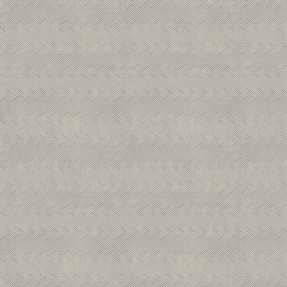 Elizabeth Ockford Revelin Black Wallpaper - Product code: WP0110104