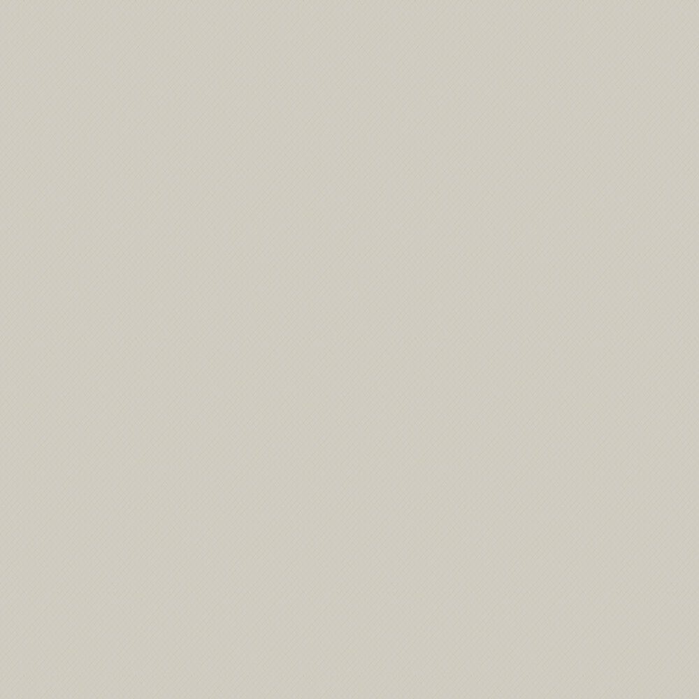 Elizabeth Ockford Elterwater Plain Taupe Wallpaper - Product code: WP0110301