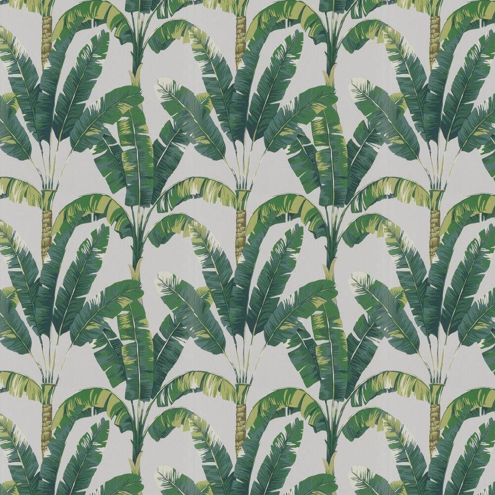 Palmaria Wallpaper - Green - by Osborne & Little
