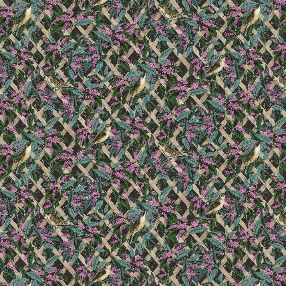 Brassica Wallpaper - Black - by Albany